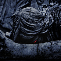 Buy canvas prints of Statue of an Dark Angel Praying Close Up by Daniel Ferreira-Leite