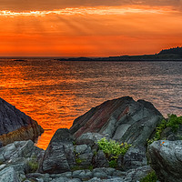 Buy canvas prints of A Sailor's Delight by Garvin Hunter