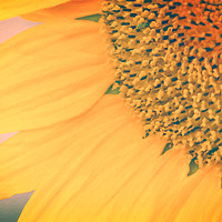 Buy canvas prints of Toasted Sunflower by Garvin Hunter