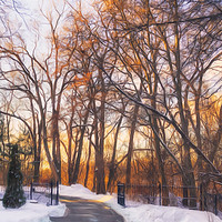 Buy canvas prints of Golden Light Through the Trees by Garvin Hunter