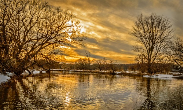 Golden River Canvas print by Garvin Hunter