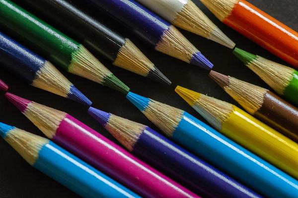 Celebrating Colour Canvas print by Garvin Hunter
