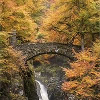 Buy canvas prints of Hermitage Bridge by Craig Doogan