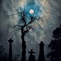 Buy canvas prints of Dundee Necropolis  by Craig Doogan