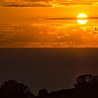 Buy canvas prints of Birds in the Devon Sunrise by Jeremy Hayden