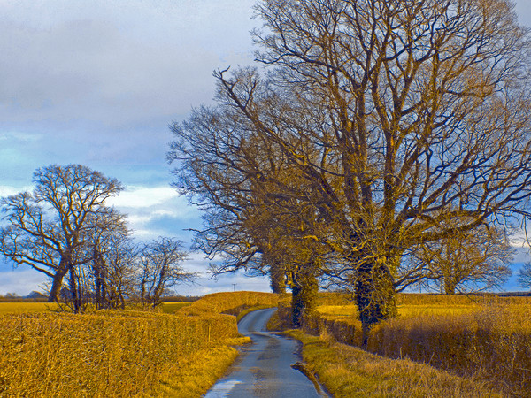 millhalf lane whitney on wye herefordshire Canvas print by paul ratcliffe