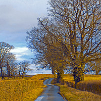 Buy canvas prints of millhalf lane whitney on wye herefordshire by paul ratcliffe