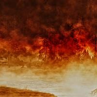 Buy canvas prints of Fireburst by Steve de Roeck