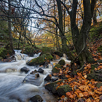 Buy canvas prints of Wyming Brook by Peter Towle