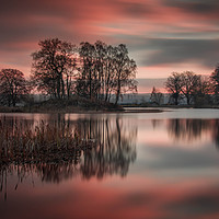 Buy canvas prints of Larbert Loch Sunset by Klikiti Klik