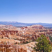 Buy canvas prints of Bryce Canyon Panorama by Nick Caville