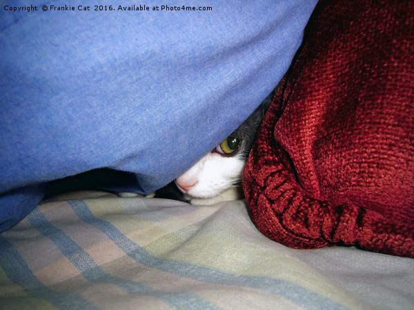Peek a Boo Canvas print by Frankie Cat