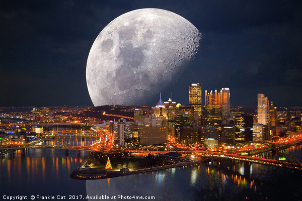 Spacey Pittsburgh Canvas print by Frankie Cat