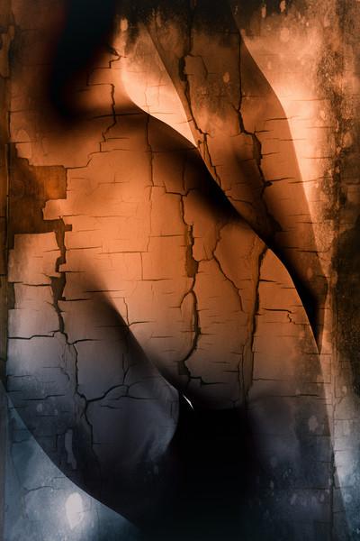 female naked curves  Acrylic by Dagmar Giers