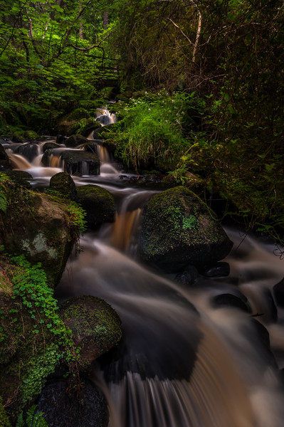 Wyming Brook Canvas print by Paul Andrews