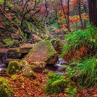 Buy canvas prints of Padley Gorge by Paul Andrews