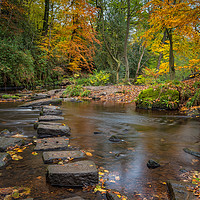 Buy canvas prints of Rivelin Stepping Stones  by Paul Andrews