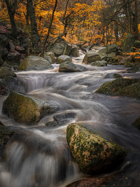 Padley Gold Canvas print by Paul Andrews