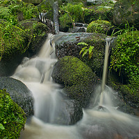 Buy canvas prints of Wyming Brook 2 by John Gent