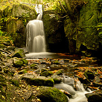 Buy canvas prints of Lumsdale Falls in Autumn by John Gent