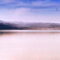 Buy canvas prints of Winter Dusk on Lake Staffel by Kasia Design