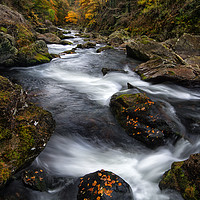Buy canvas prints of Autumn on the Aberglasyn by Clive Ashton