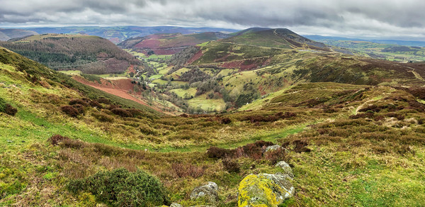 Looking down on the Horseshoe Pass, Llangollen Canvas Print by Clive Ashton