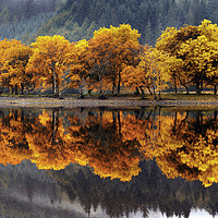 Buy canvas prints of Autumn colours on Loch Lubnaig by Chris Drabble