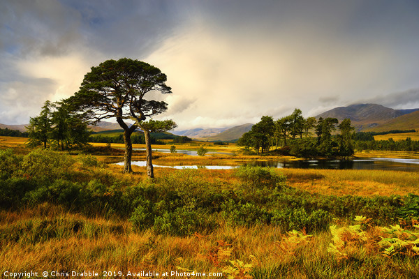 Early light at Loch Tulla, Bridge of Orchy Framed Mounted Print by Chris Drabble