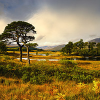 Buy canvas prints of Early light at Loch Tulla, Bridge of Orchy by Chris Drabble