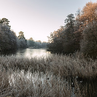Buy canvas prints of Hoar Frost at Virginia Water Lake by Bob Barnes