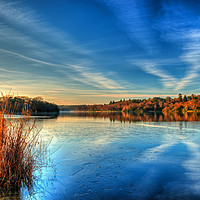Buy canvas prints of Virginia Water Lake Virginia Water Surrey by Bob Barnes