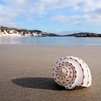 Buy canvas prints of Deserted Beach - Lyme Regis by Susie Peek