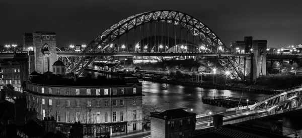 Tyne Bridge Canvas Print by ANDY GIBBINS