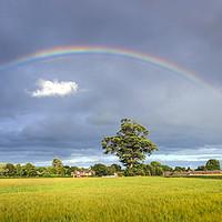 Buy canvas prints of Rainbow Over Barley Fields by Ian Haworth