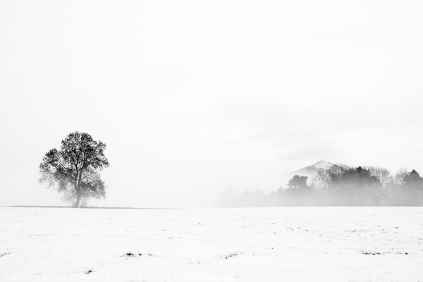 Whiteout Canvas print by Mark Greenwood