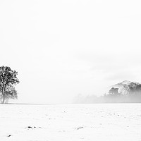 Buy canvas prints of Whiteout by Mark Greenwood