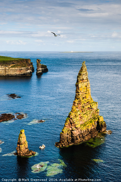Duncansby Sea Stacks Canvas print by Mark Greenwood