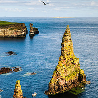 Buy canvas prints of Duncansby Sea Stacks by Mark Greenwood