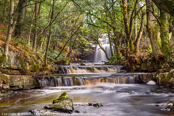Summerhill Force in Teesdale Canvas print by Amanda Ainsley