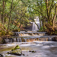 Buy canvas prints of Summerhill Force in Teesdale by Amanda Ainsley