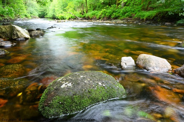 River Dart                                  Canvas Print by philip myers