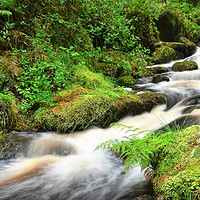 Buy canvas prints of    Wyming Brook                                 by philip myers