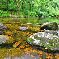 Buy canvas prints of    River Dart                                  by philip myers
