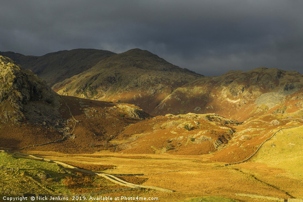 Coniston Fells Autumn Lake District Canvas print by Nick Jenkins