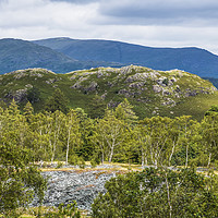 Buy canvas prints of Fells from Hodge Close Quarry Lake District by Nick Jenkins