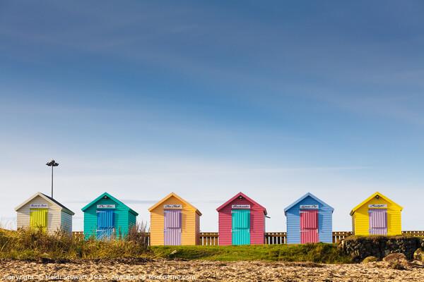 Colourful Beach Huts at Amble Framed Mounted Print by Heidi Stewart