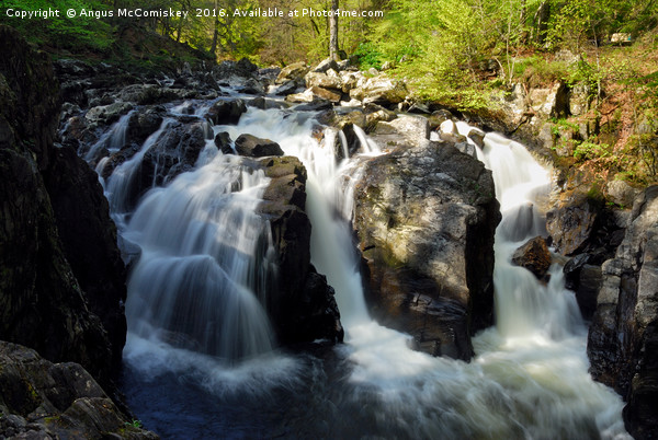 Black Linn Waterfall in spring Canvas print by Angus McComiskey