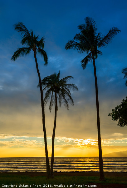 Spectacular beach sunset in the town of Lahaina on Canvas print by Jamie Pham