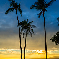 Buy canvas prints of Spectacular beach sunset in the town of Lahaina on by Jamie Pham